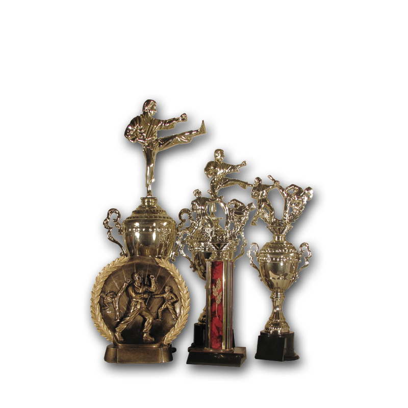 Custom and personalized trophies from Ashworth Awards.