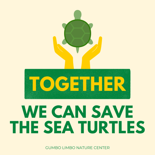 Together we can save the sea turtles. Gumbo Limbo Nature Center.