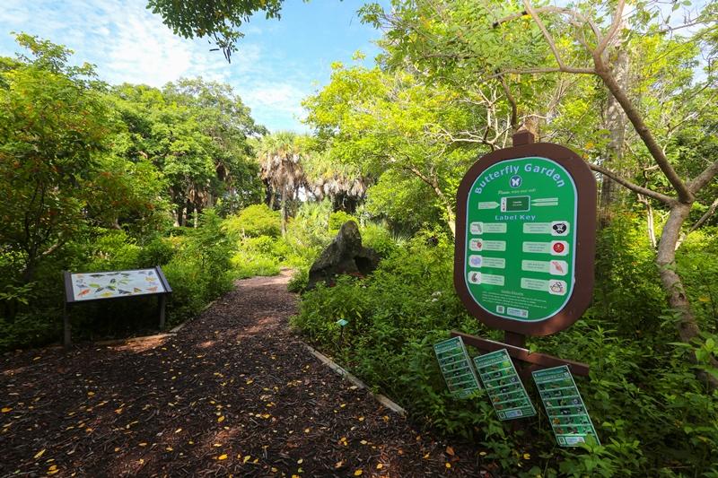 trail through butterfly garden