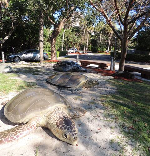 sea turtle sculptures on lawn