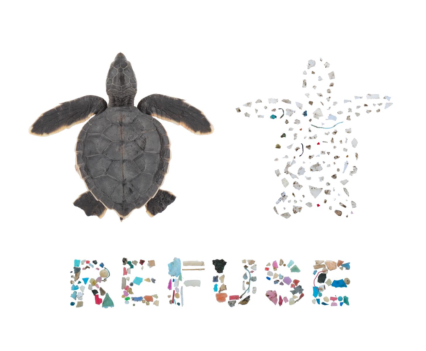 Refuse Single Use Plastics