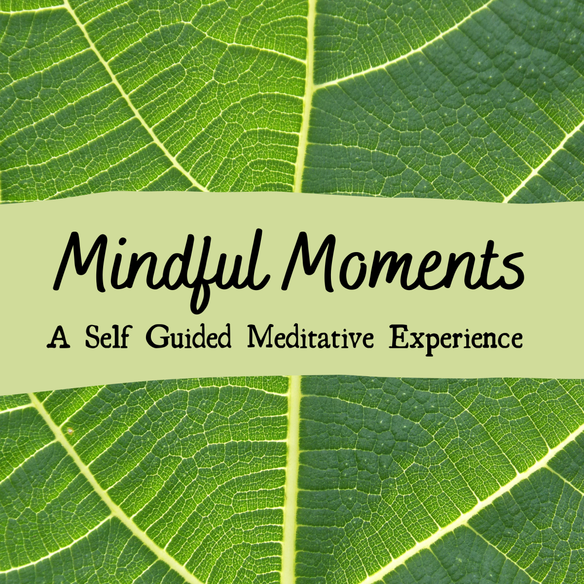 Mindful Moments: A Meditative Experience