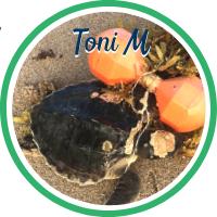 Open Toni Morrison's patient page.