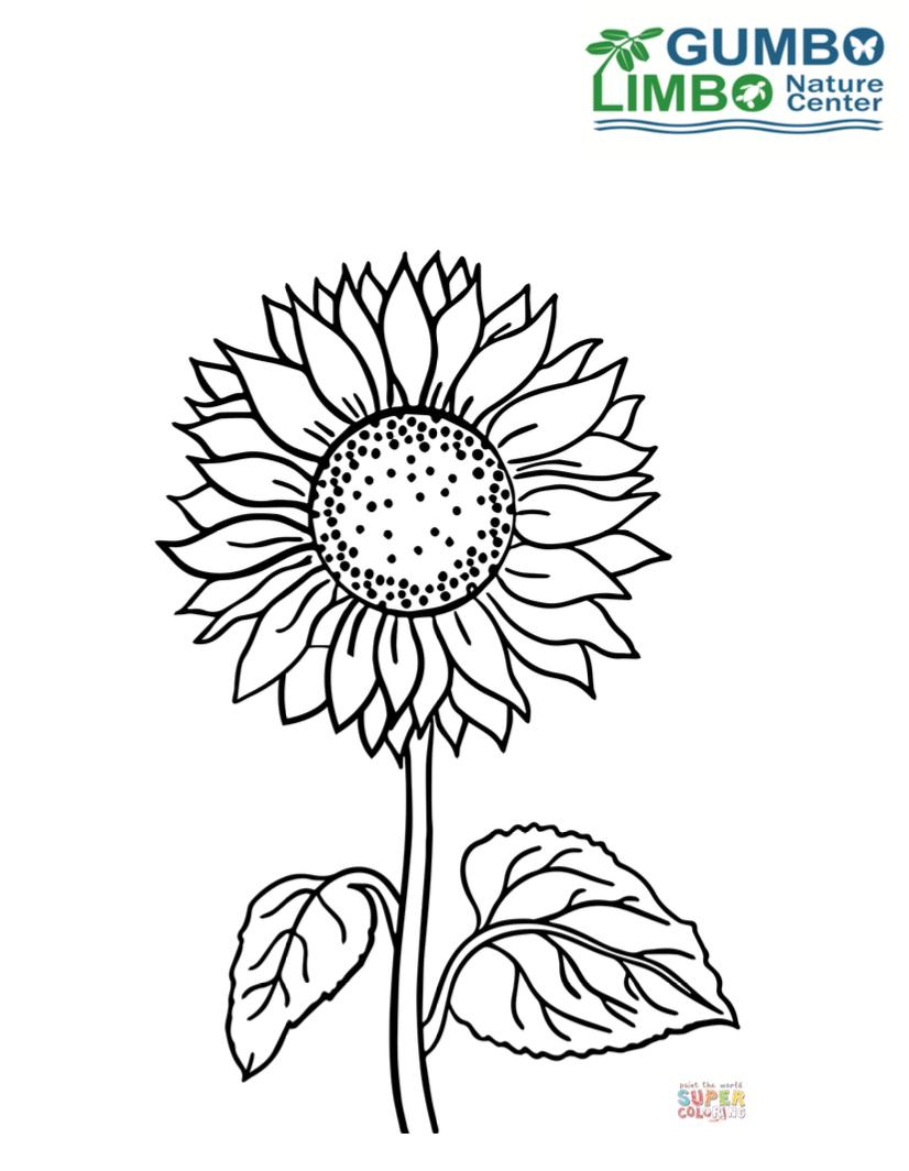 Storytime Flower