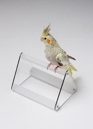 VSP Avian Perch